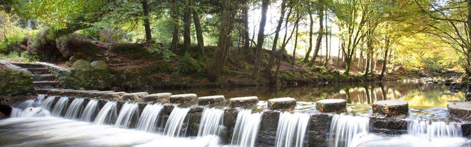 Stepping Stones, Tollymore, Newcastle